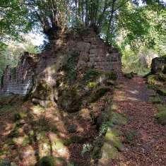 Ruines du Château du Grand Ringelstein ou Ringelsbourg - image