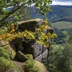 Point de vue Rocher du Corbeau - image
